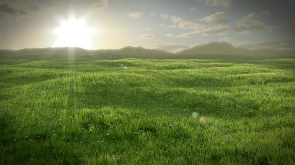 grassyfield